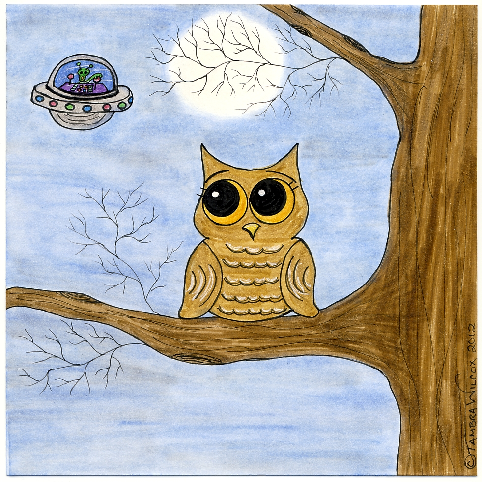 Owl and the UFO